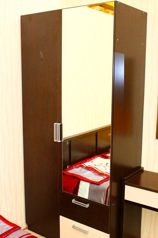 шкаф двух-дверный с зеркалом в спальню для одежды