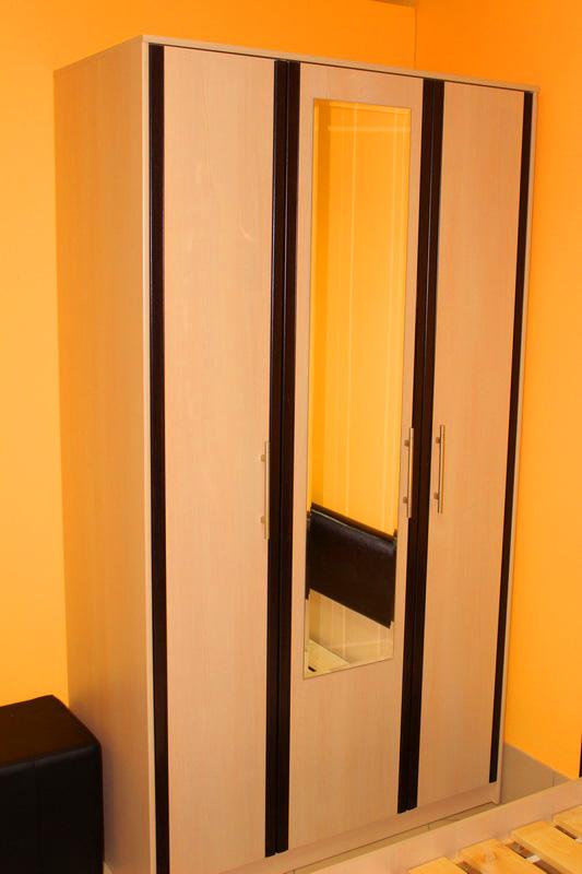 шкаф для одежды в спальню светлый с темными вставками